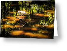 Beauty Of The Bog Greeting Card by Karen Wiles