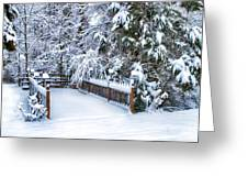 Beauty Of Winter Greeting Card by Kathy Jennings