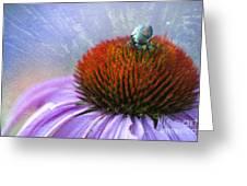 Beetlemania Greeting Card by Juli Scalzi