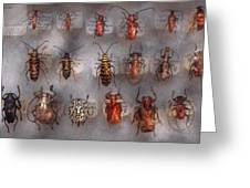 Beetles - The usual suspects  Greeting Card by Mike Savad