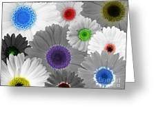 Behind Every Black And White Dream Theres A Rainbow Waiting To Be Seen Greeting Card by Janice Westerberg