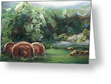 Beliveau Hay Rolls Greeting Card by Donna Tuten