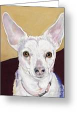 Belle Greeting Card by Pat Saunders-White