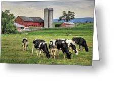 Belleville Cows Greeting Card by Lori Deiter