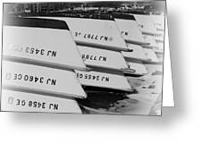 Belmar Marina Rowboats Greeting Card by Paul Ward