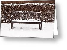 Bench In The Snow Greeting Card by Tom Gowanlock