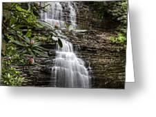 Benton Falls Greeting Card by Debra and Dave Vanderlaan