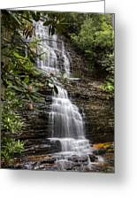 Benton Falls Greeting Card by Debra and Dave Vanderlaan