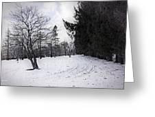Berkshires Winter 9 - Massachusetts Greeting Card by Madeline Ellis