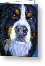 Bernese Mountain Dog In Snowfall Greeting Card by Lyn Cook