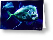 Big Fish Small Fish - Electric Greeting Card by Wingsdomain Art and Photography