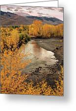 Big Lost River In Autumn Greeting Card by Leland D Howard