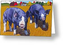 Big Pigs Greeting Card by Stacey Neumiller
