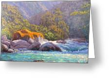 Big Rocks Holyford River Greeting Card by Terry Perham