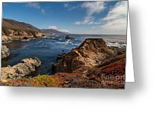 Big Sur Vista Greeting Card by Mike Reid