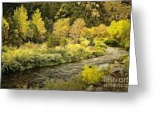 Big Thompson River 4 Greeting Card by Jon Burch Photography