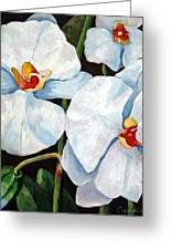 Big White Orchids - Floral Art By Betty Cummings Greeting Card by Betty Cummings