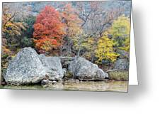 Bigtooth Maple And Rocks Fall Foliage Lost Maples Texas Hill Country Greeting Card by Silvio Ligutti