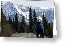 Biking Denali Style Greeting Card by Tara Lynn