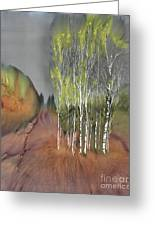 Birch Grove 1 Greeting Card by Carolyn Doe