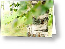Birch Tree. The Soul Of Russian Nature Greeting Card by Jenny Rainbow