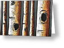Birches A Touch Of Red Greeting Card by Lori McPhee