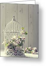 Bird Cage Greeting Card by Amanda And Christopher Elwell