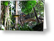Bird - National Aquarium In Baltimore Md - 12121 Greeting Card by DC Photographer