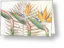 Bird Of Paradise 05 Elena Yakubovich Greeting Card by Elena Yakubovich