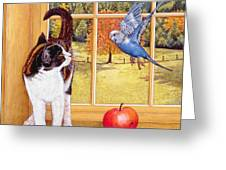 Bird Watching Greeting Card by Ditz