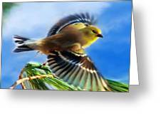 Bird Wings Of Song Greeting Card by Christina Rollo