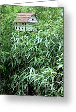 Birdhouse Collection II Greeting Card by Suzanne Gaff
