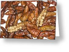 Bird's Eye Chilli Peppers Greeting Card by Power And Syred