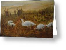 Birds In The Marshes Greeting Card by Betty Pimm