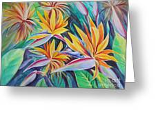 Birds Of Paradise Greeting Card by Summer Celeste