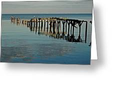 Birds On Old Dock On The Bay Greeting Card by Michael Thomas