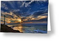 Birdy Bird At Hilton Beach Greeting Card by Ron Shoshani