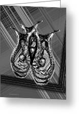 Black And White Still Life Greeting Card by Mario  Perez