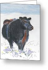 Black Cow Drawing Greeting Card by Mike Jory