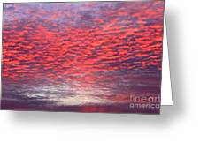 Black Friday Sunrise Greeting Card by Jay Nodianos
