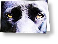 Black Labrador Retriever Dog Art - Lab Eyes Greeting Card by Sharon Cummings