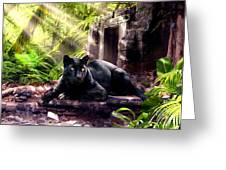 Black Panther Custodian Of Ancient Temple Ruins  Greeting Card by Gina Femrite