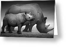 Black Rhinoceros Baby And Cow Greeting Card by Johan Swanepoel