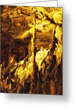 Blanchard Springs Caverns-arkansas Series 07 Greeting Card by David Allen Pierson