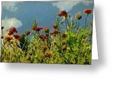 Blanketing The Sky Greeting Card by Jeff Kolker
