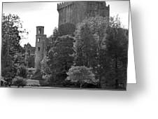Blarney Castle Greeting Card by Mike McGlothlen