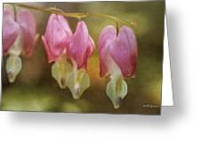 Bleeding Heart Greeting Card by Jeff Swanson