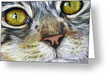 Stunning Cat Painting Greeting Card by Michelle Wrighton