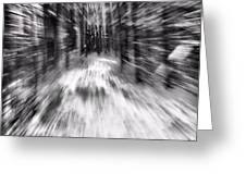Blizzard In The Forest Greeting Card by Dan Sproul