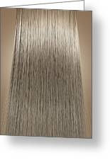 Blonde Hair Perfect Straight Greeting Card by Allan Swart